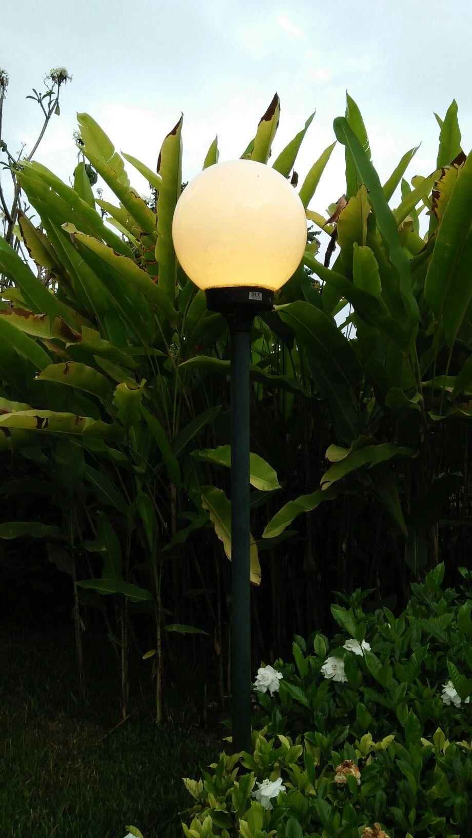Lampu Taman Lampu Taman