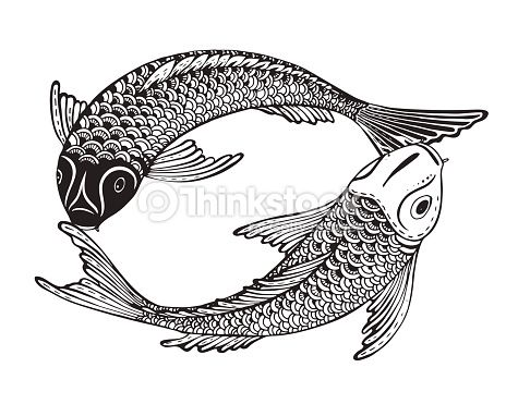 Hand Drawn Vector Illustration Of Two Koi Fishes Symbol Of Love