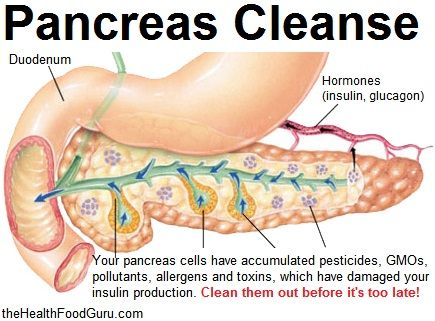 Cleanse Your Pancreas Before Its Too Late Http