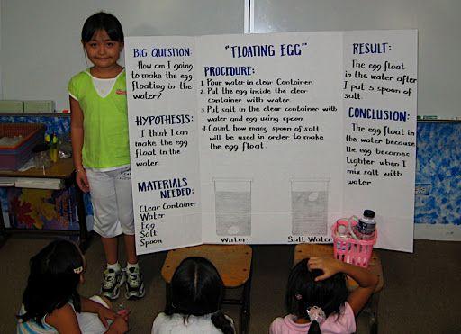 Science Fair Display Board For Floating Egg Floating Egg