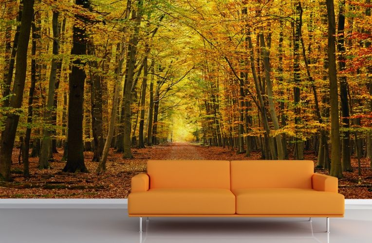 Autumn pathway tree wallpaper wall mural wall murals for Autumn forest 216 wall mural