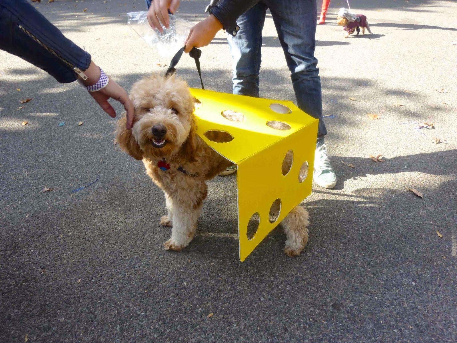 Dog Costume Cheese Wedge Dog Costumes