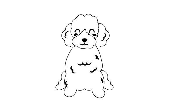 Poodle #Sponsored , #SPONSORED, #Poodle