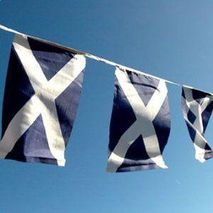 Scotland Flag Bunting, fabric 9m/30 flags