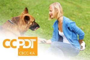 Cbcc Ka Dog Behavior Dog Training Behavior Log
