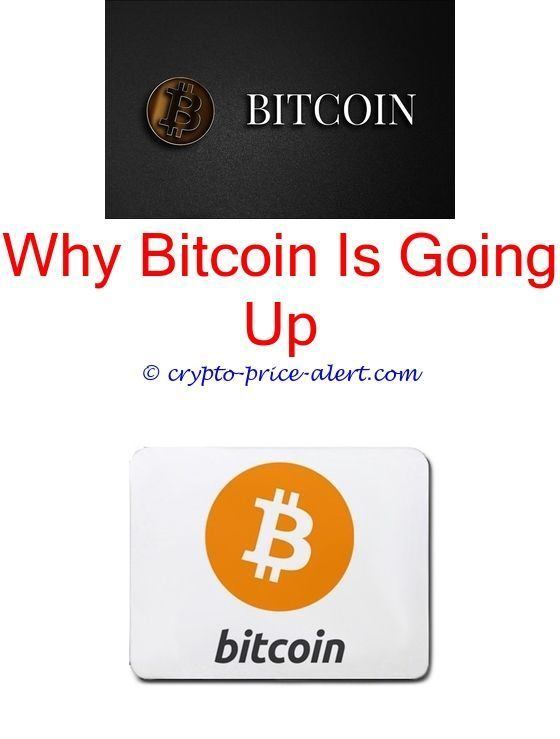 Reddit bitcoin cash palm beach group cryptocurrency bitcoin reddit bitcoin cash palm beach group cryptocurrency bitcoin competing currenciestcoin block explorer bitcoin sales tax free bitcoin really ccuart Images