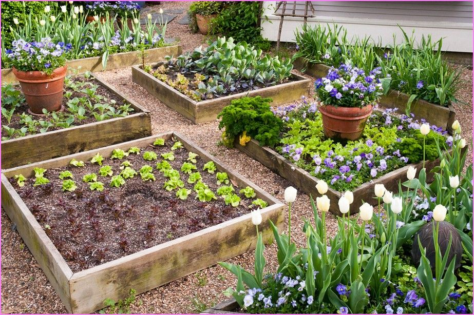 Raised Vegetable Garden Ideas And Designs raised bed vegetable garden design | home design ideas