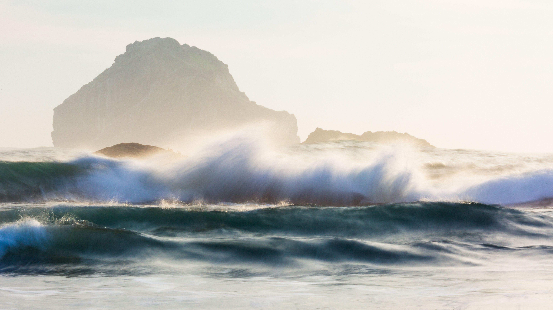 How To Survive A Tsunami