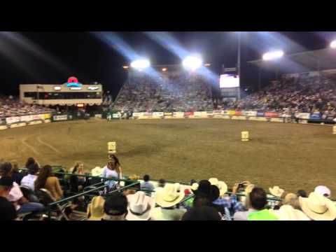 Barrel Racing Horse Vs Dirt Bike You Don T Want To Miss This