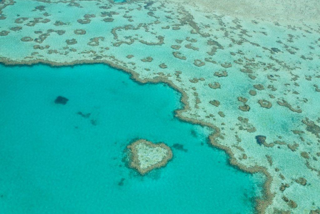 Oprahs Australian Adventure Great Barrier Reef