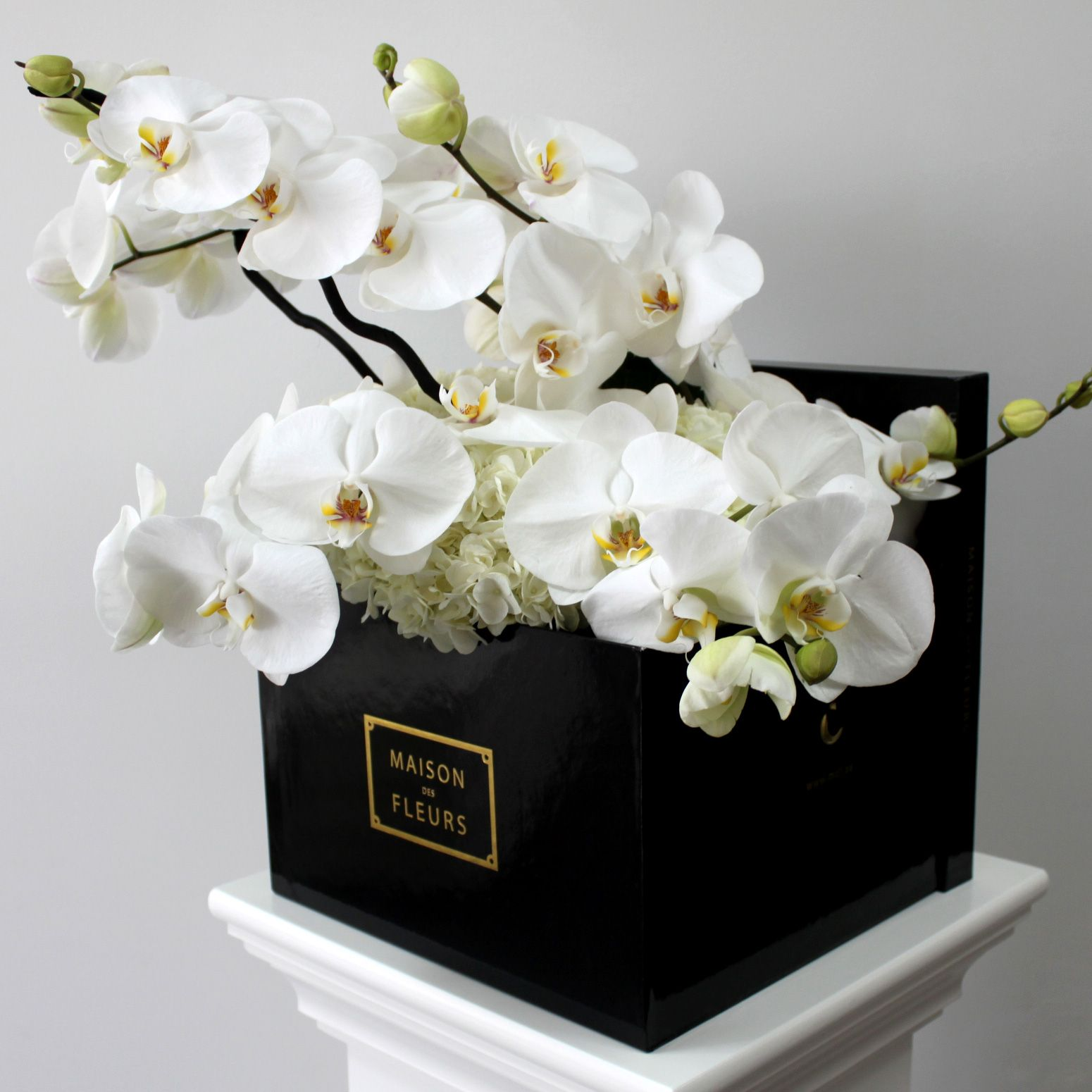 Bouquet De Fleur Square Box With Phalaenopsis Orchids Mdf Things I Love
