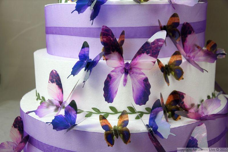 Kinderkamer Vlinder Compleet : Kleurrijke luxe d vlinders paars d vlinders wanddecoratie