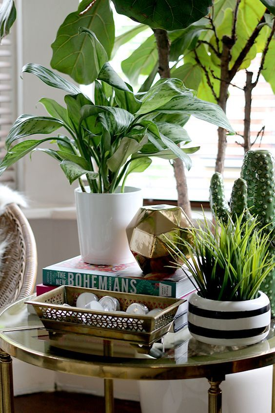 Image Result For Plant Behind Side Table Side Table Decor Plant