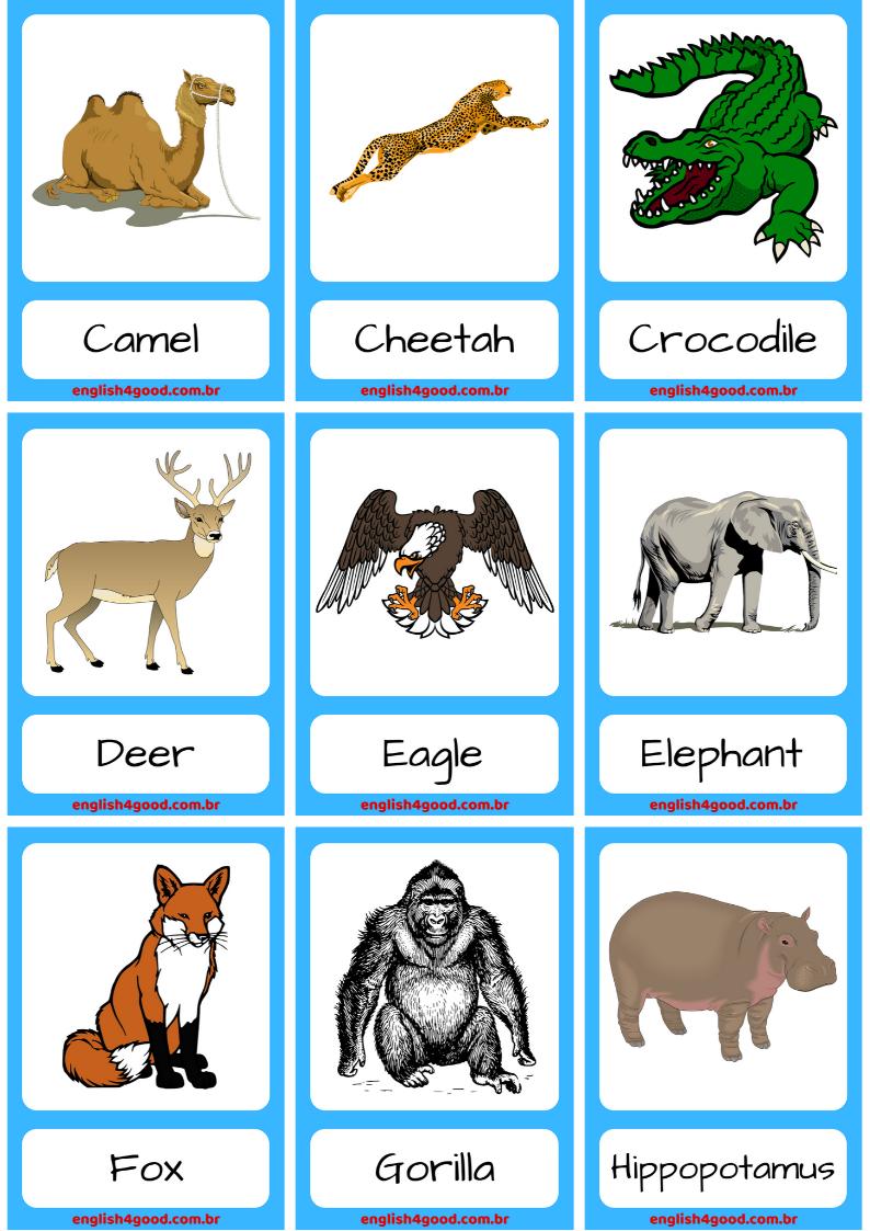 18 Farm Animal Flashcards