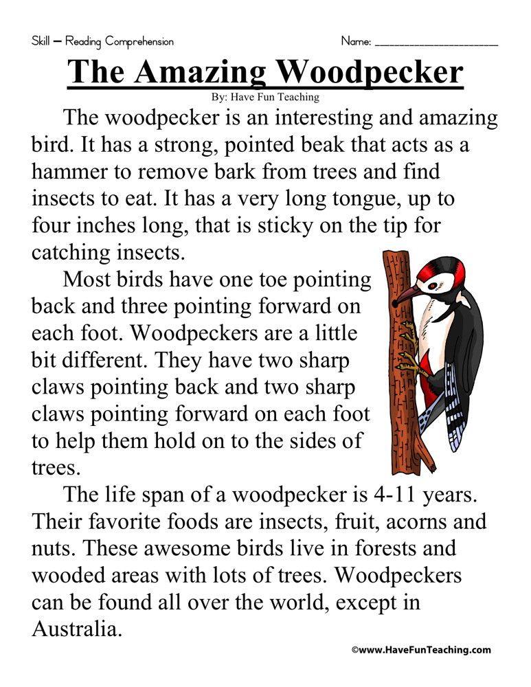 The Amazing Woodpecker