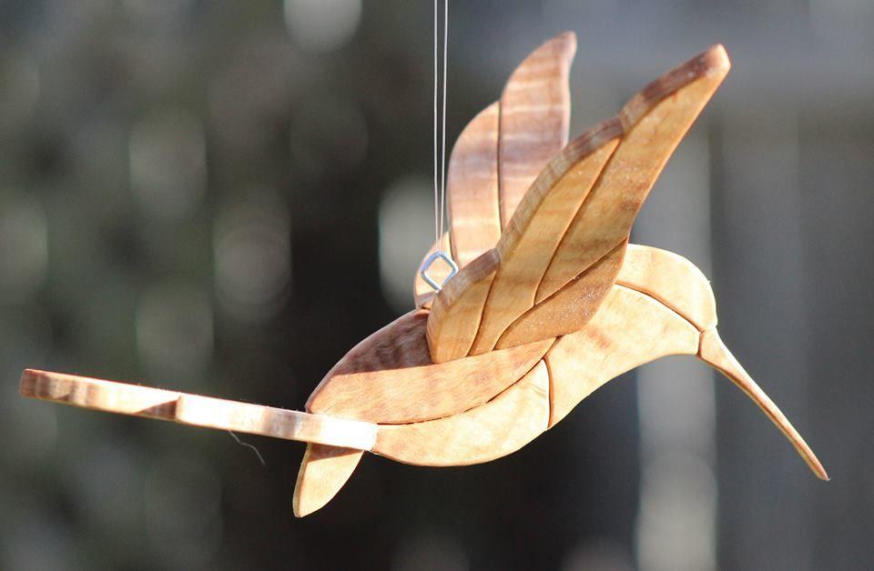 10390897_10152883808165056_6223256081111729427_n.jpg (960×628) Hummingbird 3D