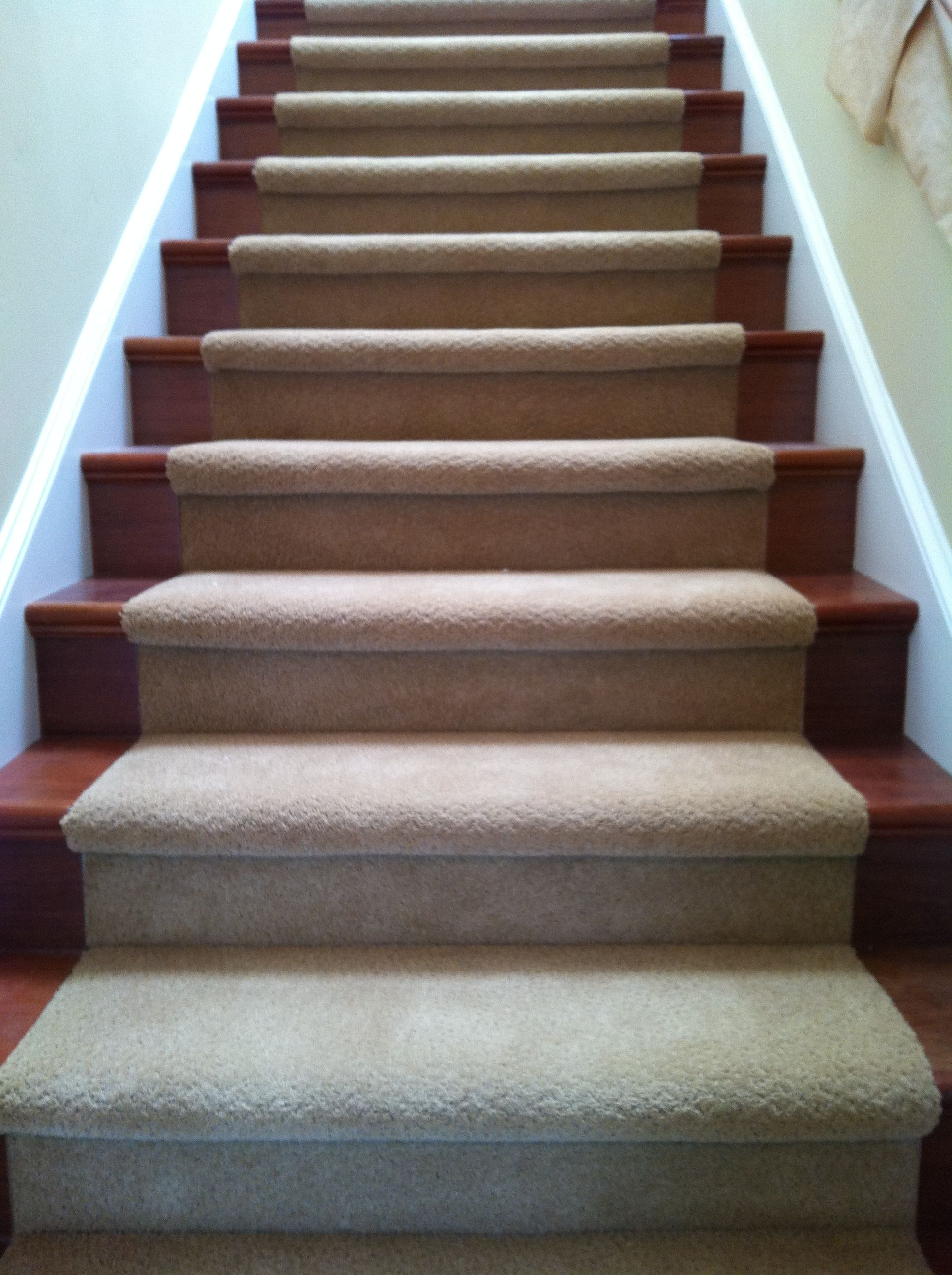 Here's a great example of hardwood stairs with carpet