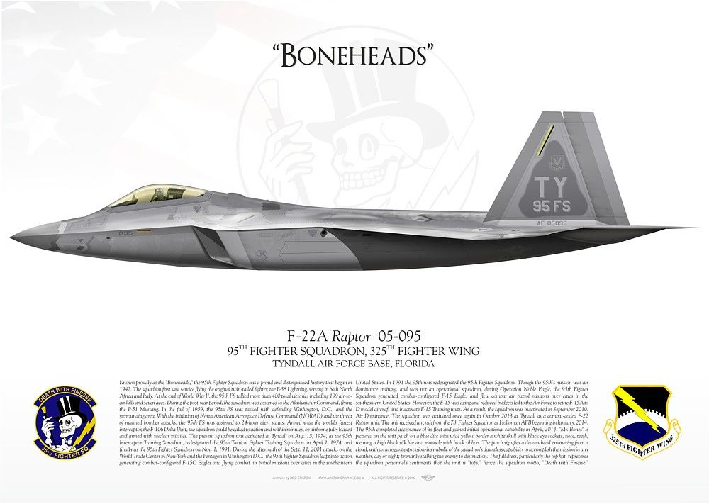 UNITED STATES AIR FORCE95TH FIGHTER SQUADRON, 325TH FIGHTER