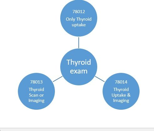 Learn When To Code CPT Codes For Thyroid Scan Or Imaging And