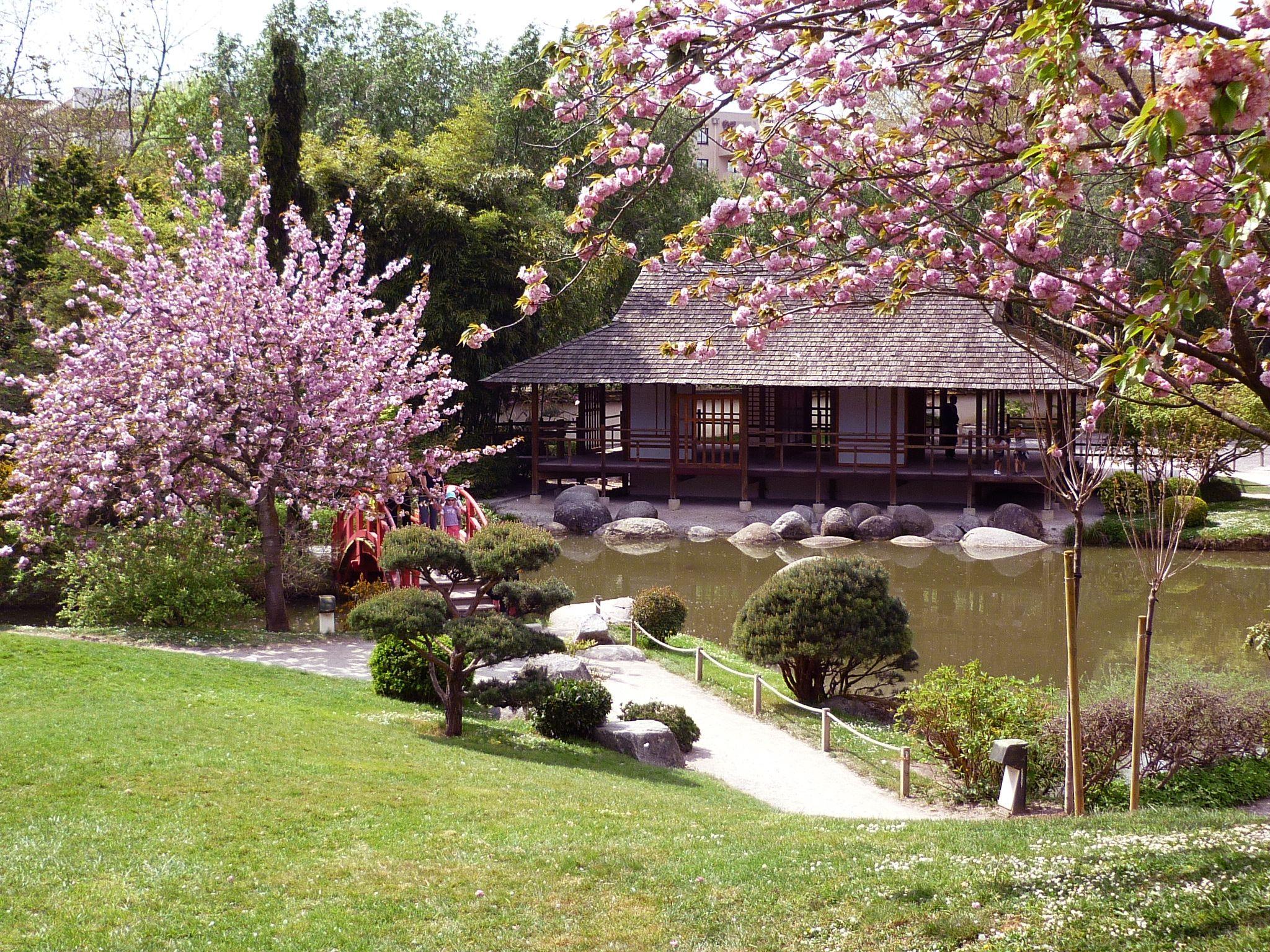 Le Jardin Japonais De Toulouse Jardin Japonais Jardins Japon
