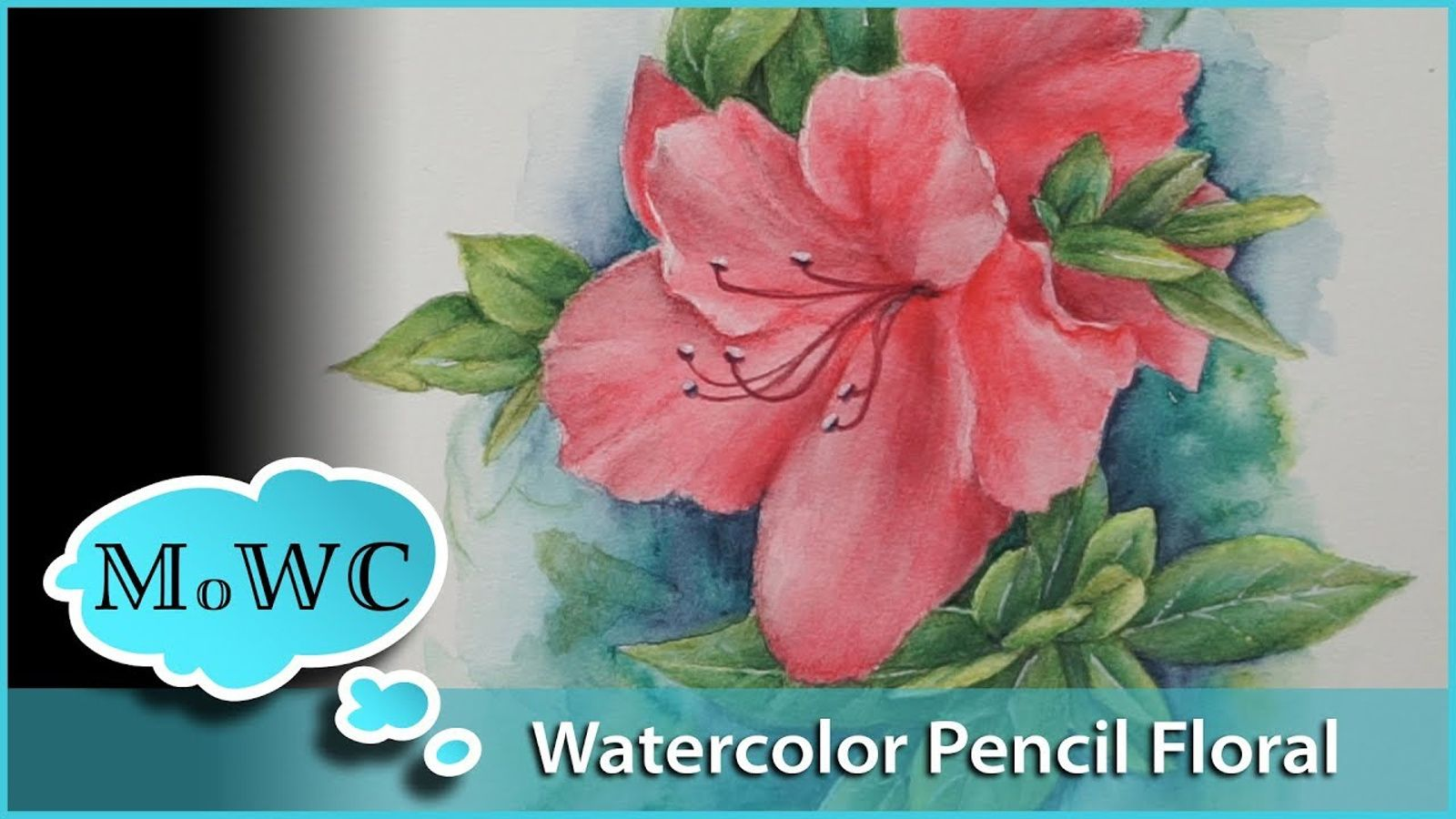 Using Watercolor Pencils To Paint An Azalea Floral Patron Preview
