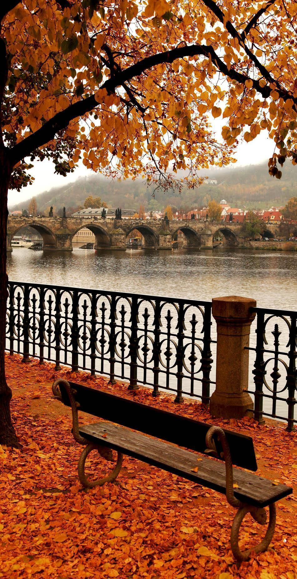 22 Reasons why Czech Republic must be in the TOP of your Bucket List #autumnseason Famous Charles Bridge in Autumn Melancholy, Prague, Czech Republic #landscapepics