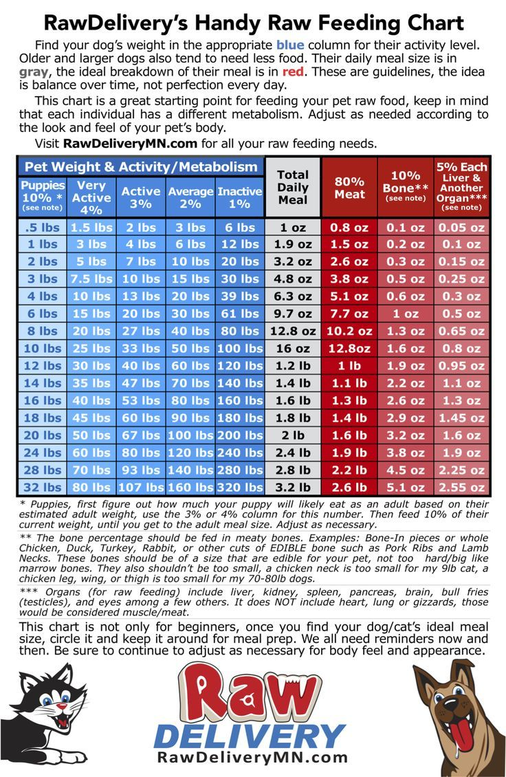 Raw Feeding Chart find your dog or cats weight and activity level