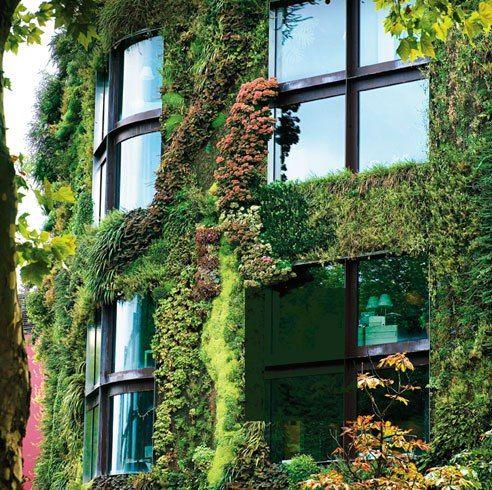 Jardin Vertical Museo Quai Branly Paris Francia | Enredaderas y ...