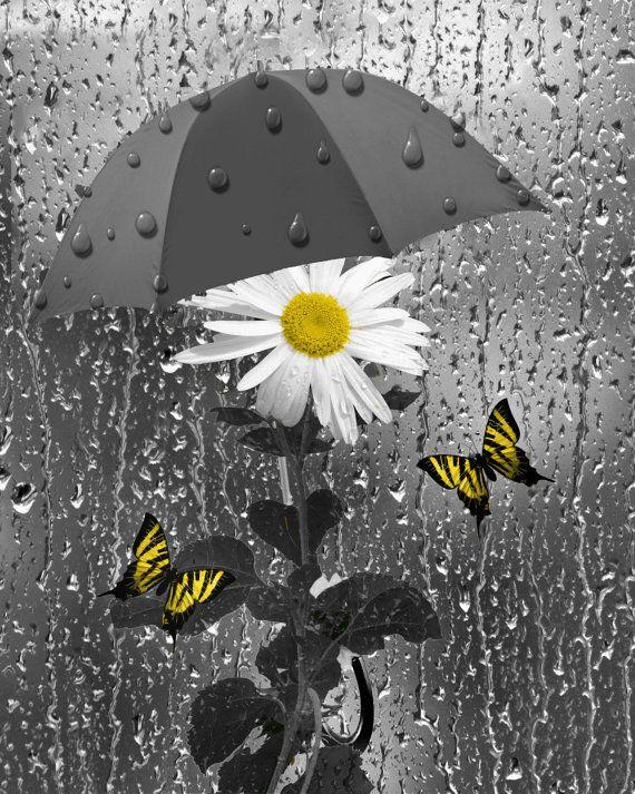 Yellow Teal Bathroom Wall Art Daisy Flower Butteflies