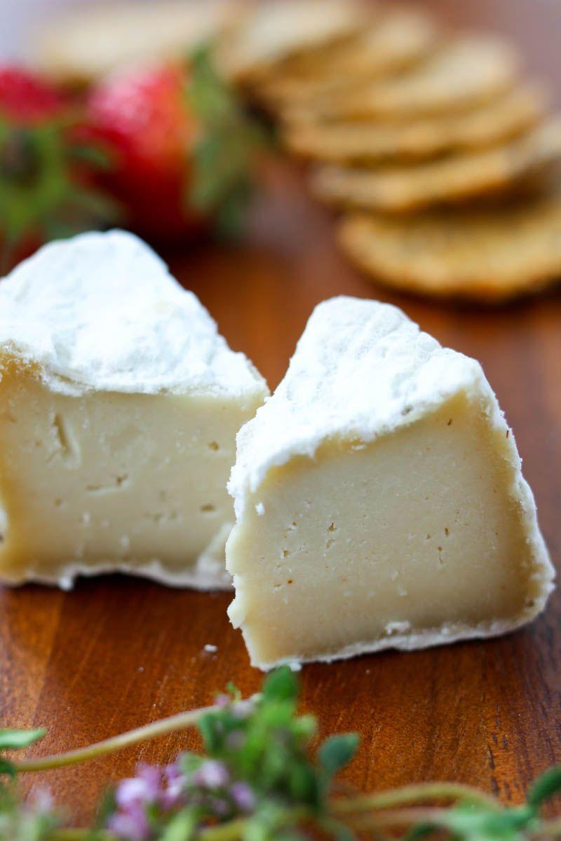 Cultured Aged Vegan Cheese Recipe Vegan Cheese Vegan Cheese Recipes Cheese