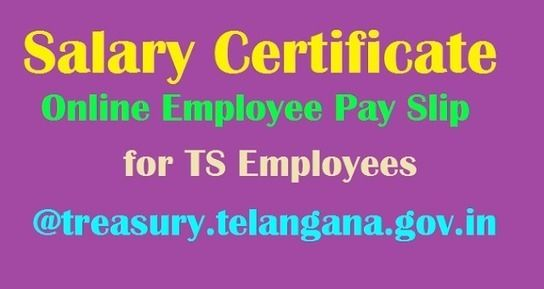 Salary Certificate\/ Online Employee Pay Slips for TS Employees - pay slip download
