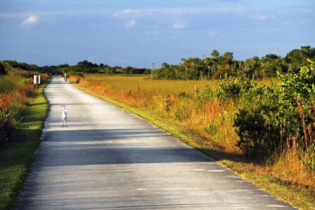 Florida family vacations cheap getaways in florida