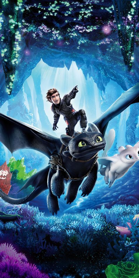 How To Train Your Dragon The Hidden World Hiccup Toothless