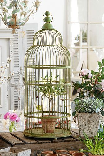 Birdcage ♡ This vintage-style bird cage looks gorgeous filled with seasonal plants  A lovely, tall, statement item for a hall, conservatory or any room in the house.