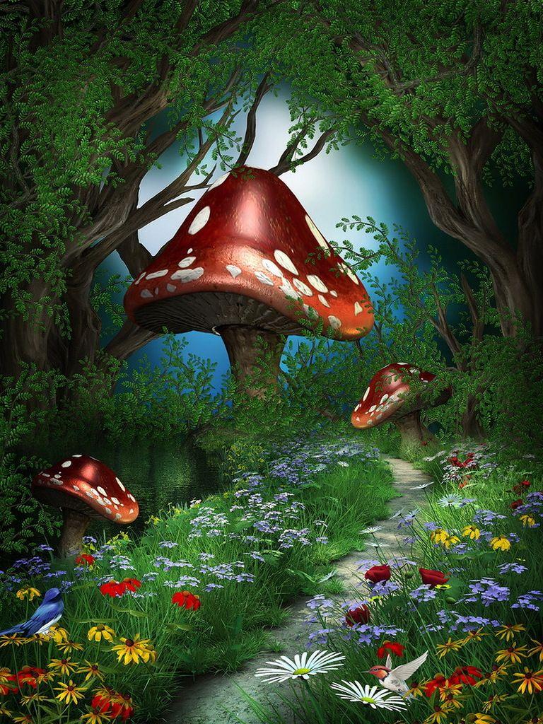 фотообои волшебный лес рыба камбала высоко