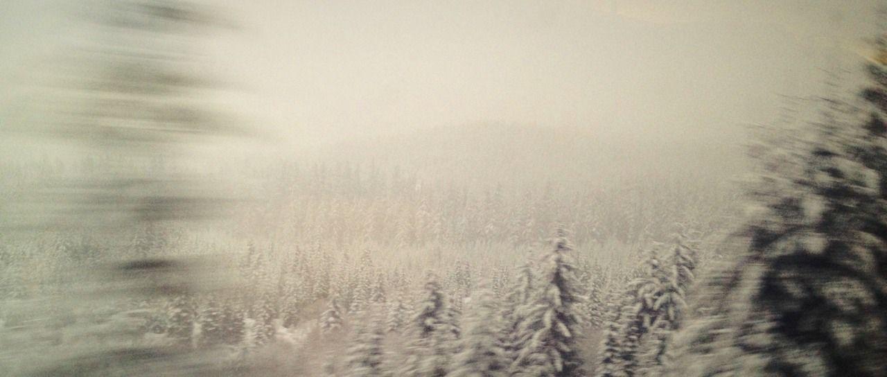 Photo essay: From Washington to California via the Amtrak Coast Starlight. #amtrak #trains #travel