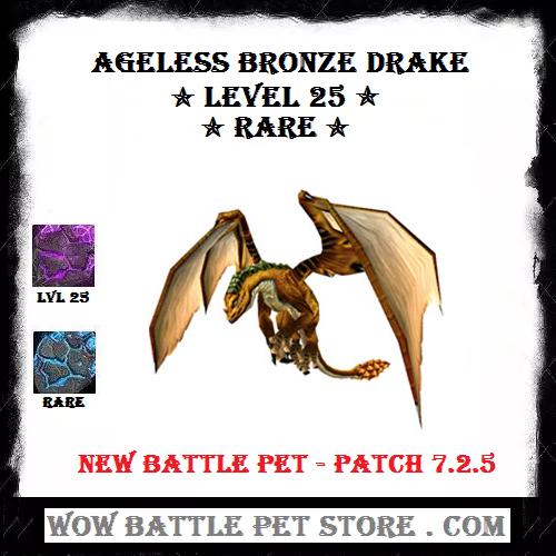 Ageless Bronze Drake Lvl 25 | WoW Pets For Sale | World of Warcraft