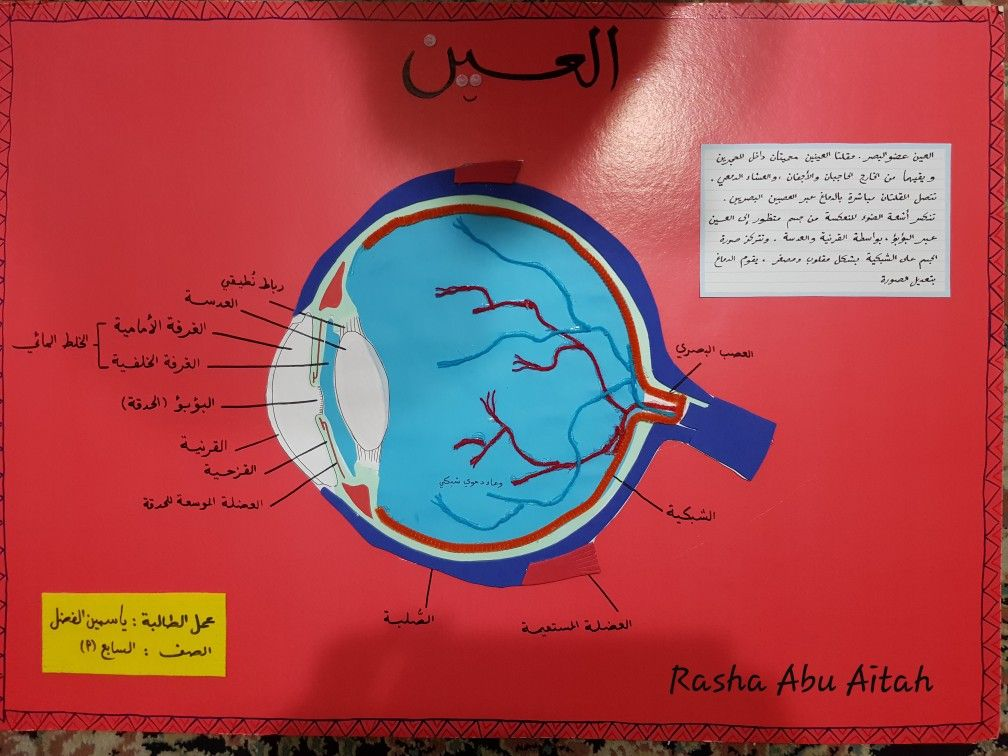 Pin By Rasha Abu Aitah On مشاريع Movie Posters Poster Movies