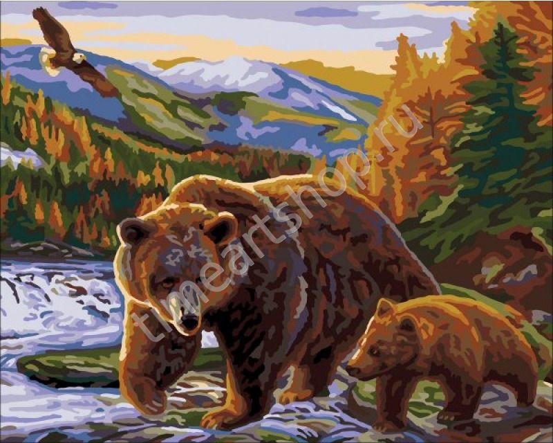 Медведи | Краска, Раскраска по цифрам, Картины