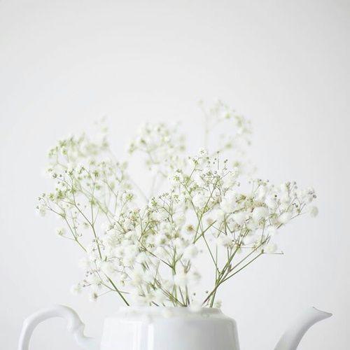 Pin By Sunshine Shapeshifter On White Pinterest White
