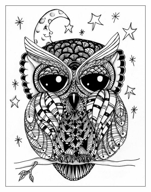 Owl Art Bird Print Tumblr Owl Coloring Pages Owl Doodle