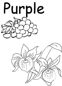 purple coloring page Color Color worksheets for