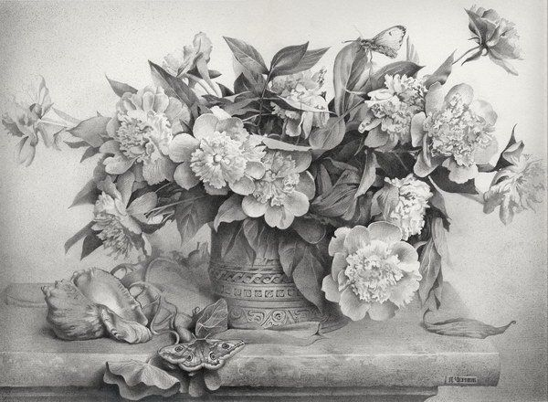 50 amazing pencil drawings flowers drawings and for Amazing drawings of roses
