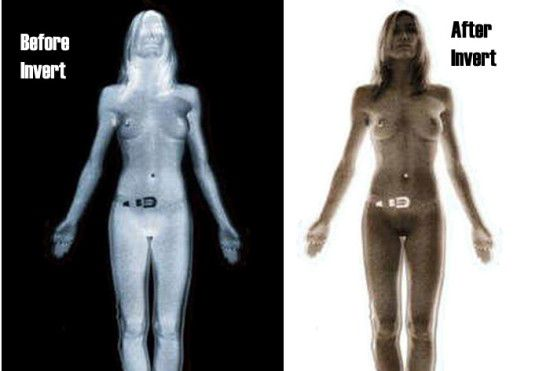 How are Body Scanners NOT Unconstitutional? | TSA | Trending