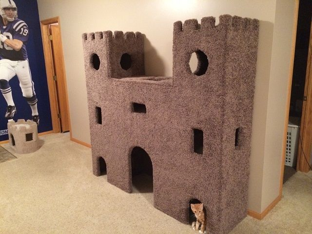 Perfect 8 Ridiculously Fun And Childish Things To Do At Home | Cat Castle, Plywood  And Castles