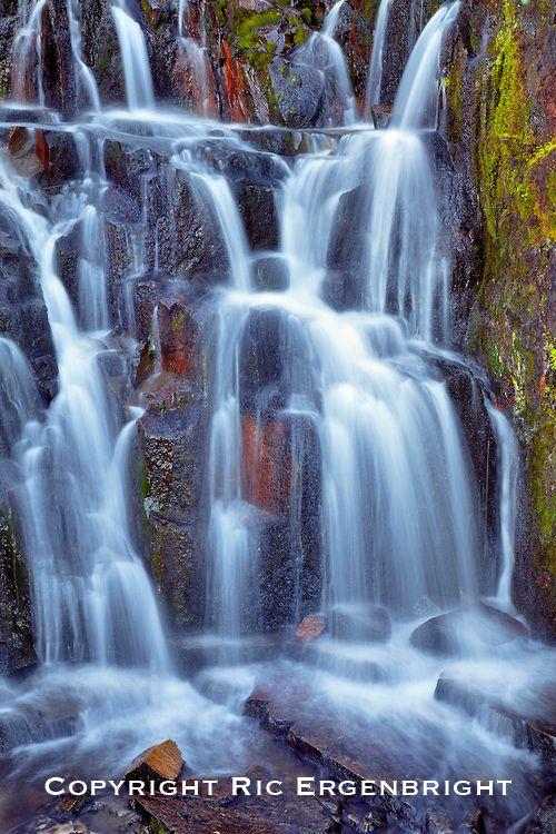 Mount Rainier National Park, Washington  | Ric Ergenbright Photography