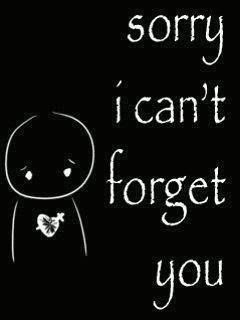 Sorry I Cant Forget You That Someone Forget Him Quotes I Cant