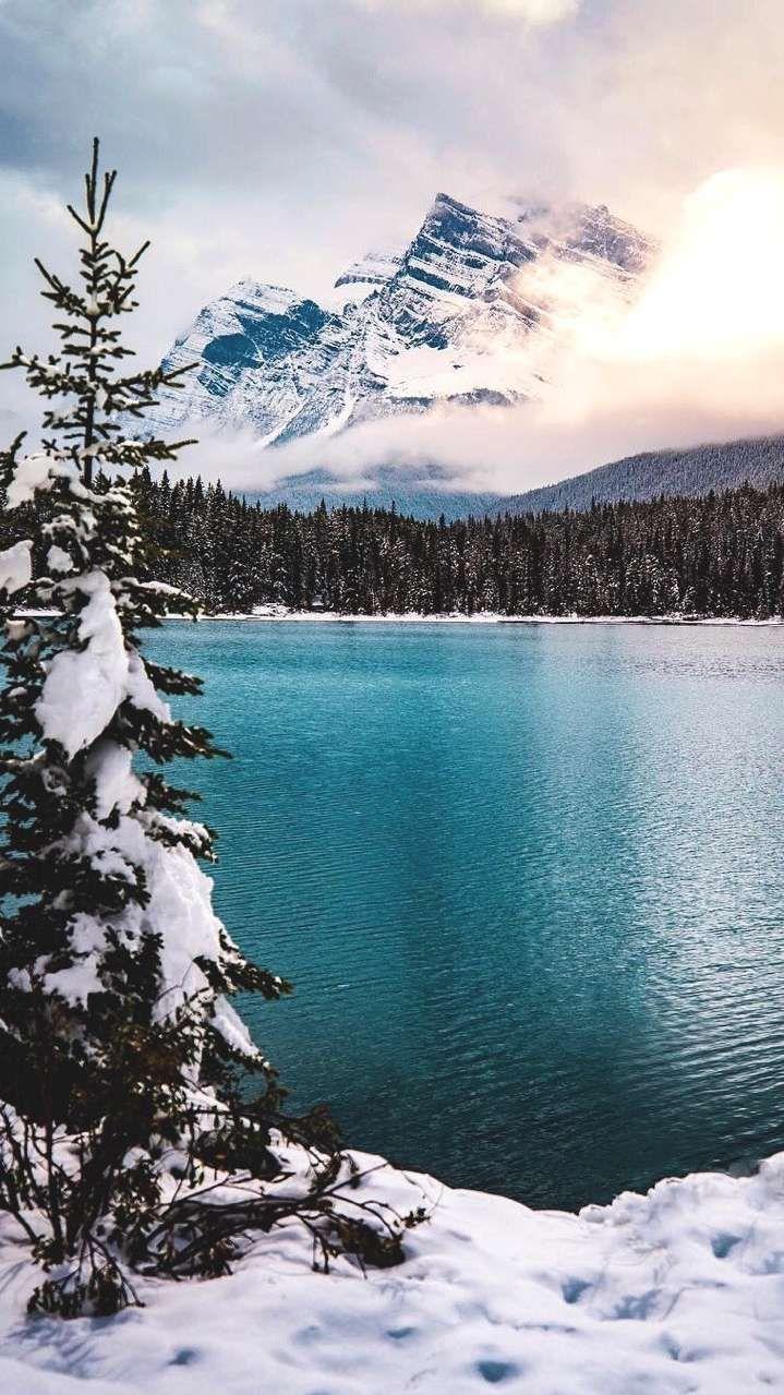 Blue Lake Winter Mountains Pine Trees iPhone Wallpaper #winterwallpaper