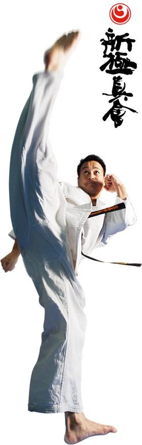 Shinkyokushin karate