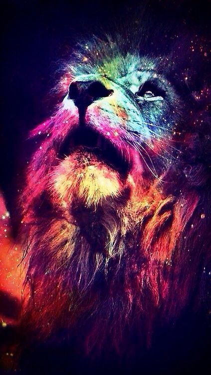 Galaxy Lion Wallpaper Lion Wallpaper Abstract Lion Colorful Lion
